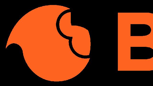 braineet_logo_name